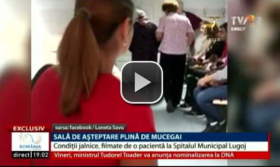 Sală de așteptare plină de mucegai și pânze de păianjen, filmată de o pacientă la Spitalul Lugoj